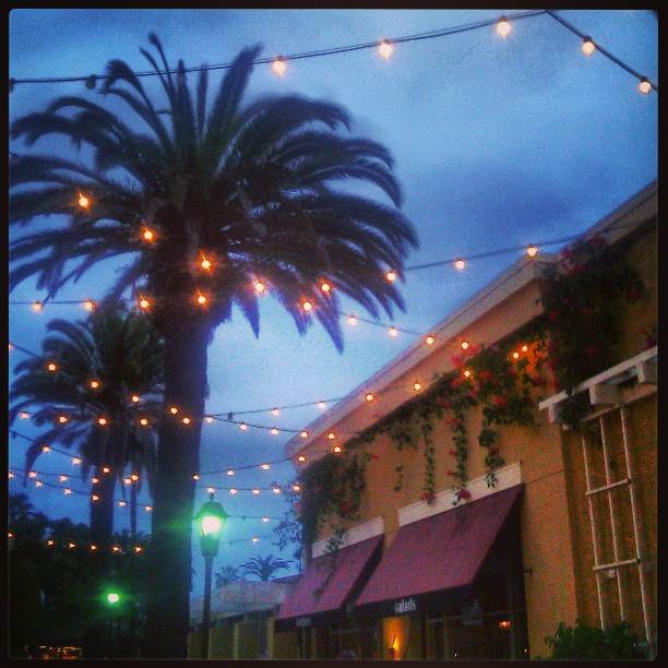 Palm trees and strings of lights outside the mall on an overcast evening. #palm #trees #mall #lights #evening #gloomy #bright #festive #manhattanbeach #california #la