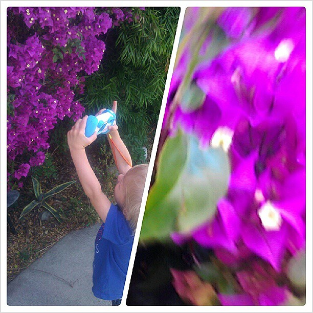 Toddler photography. #flowers #kids #purple #camera