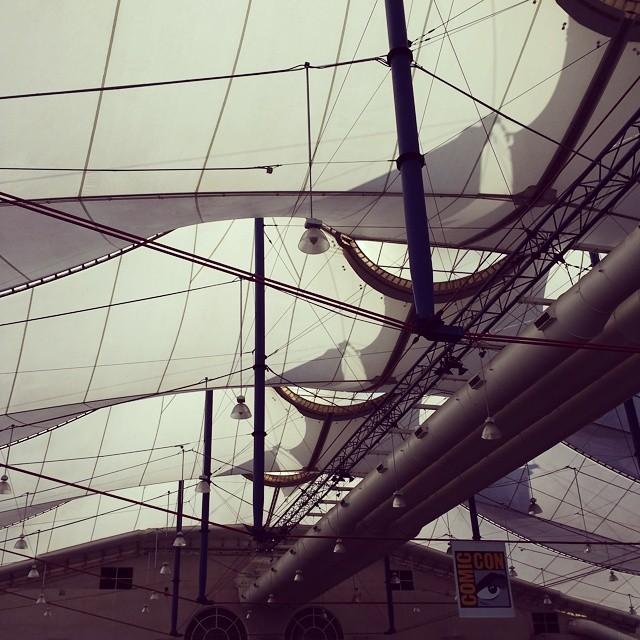 Bright future in Sails