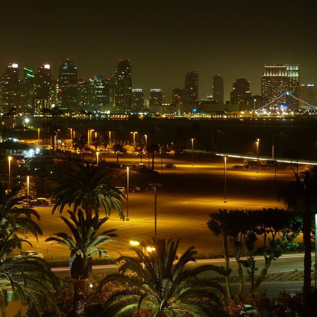 #TBT San Diego night skyline during last year's #sdcc  #sandiego #ThrowbackThursday #skyline #palmtree #night