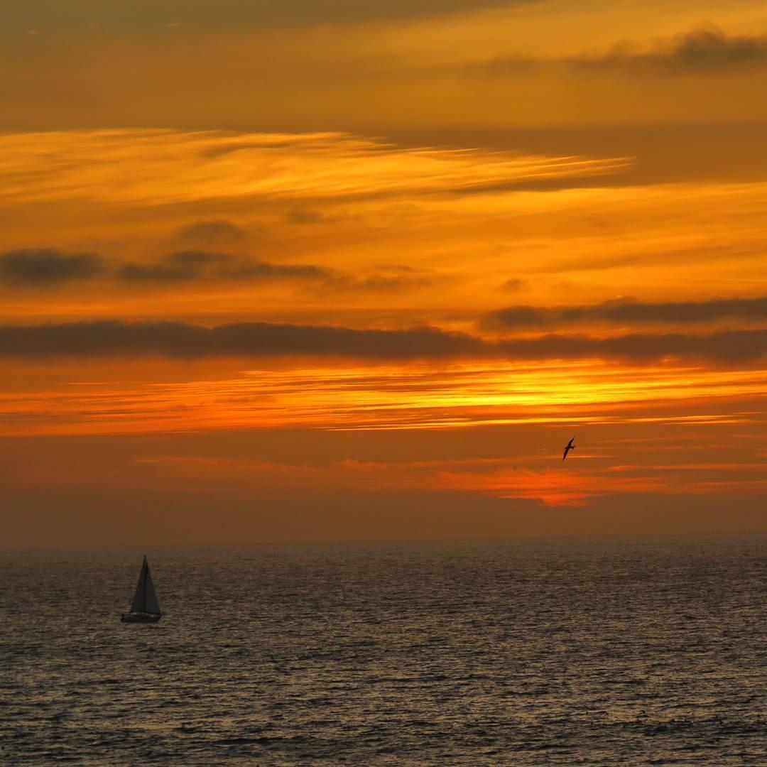 Sailing past sunset.  #ocean #sailboat #sunset