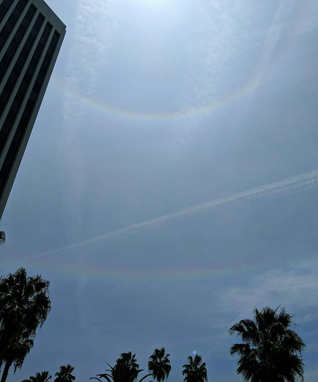 Double halo in the sky. The 22° halo around the sun is really bright and clear, and not that unusual even in Los Angeles. The circumhorizon arc below it, while faint, is also the longest I've ever seen. I've seen a couple of fragments before, some really bright. It's cool to be able to get pictures of these with my phone. There was a time I'd run to get a camera & hope it wouldn't fade first. Saturation enhanced. It's really hazy