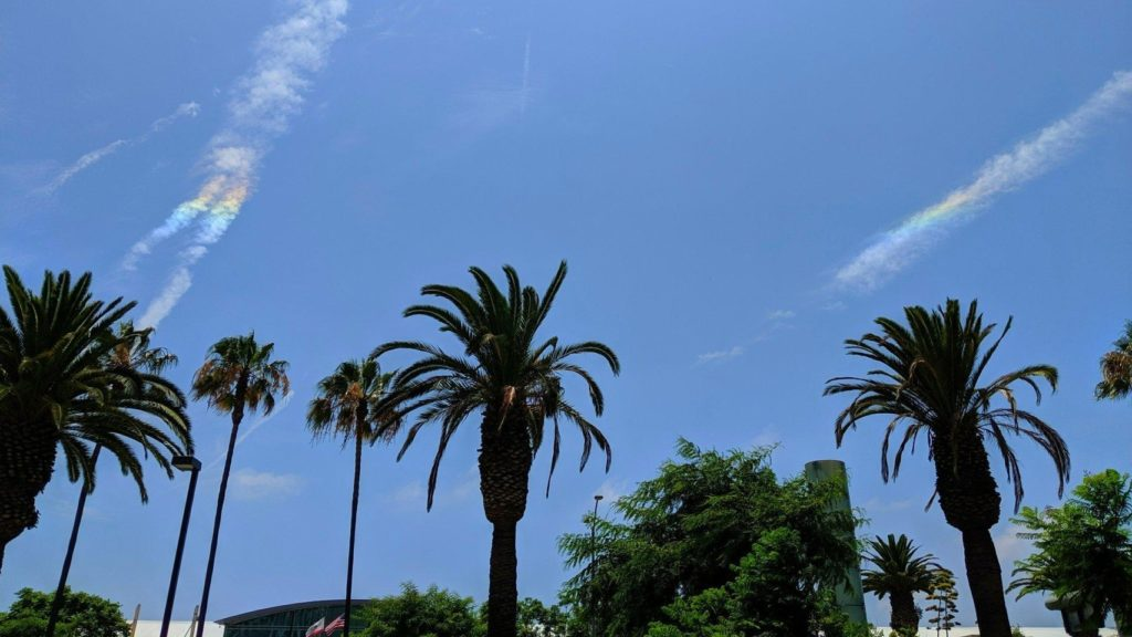 Cirrus clouds/contrails above palm trees, with two sections of cloud in rainbow-like colors.