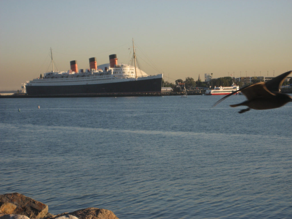 Queen Mary (ship) and Blurry Seagull.