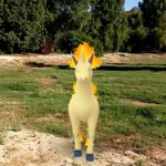 A Rapidash in an open grassy area.
