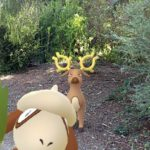 A Stantler in a wooded area.
