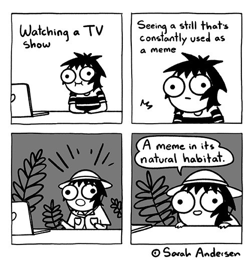 The online naturalist.