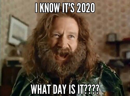 Robin Williams from Jumanji, with wild hair and beard, screaming: I know it's 2020! What DAY is it???