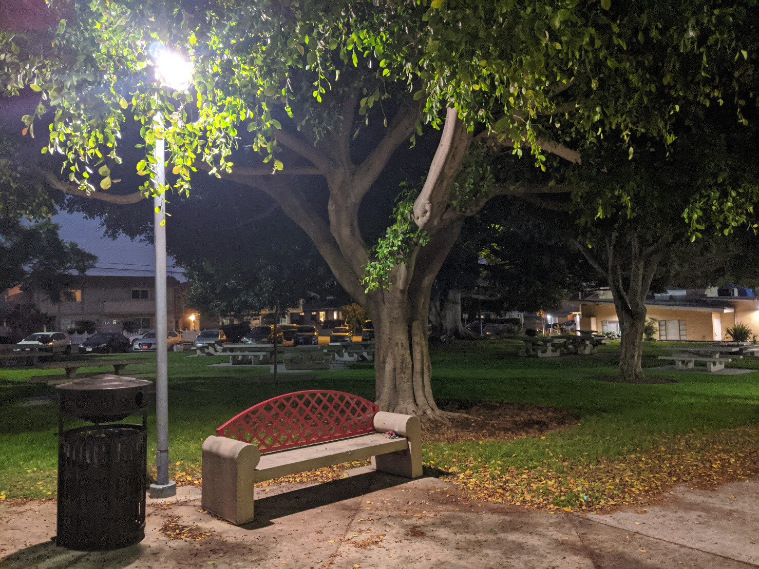 A park bench and light pole in front of a tree and a lawn. Tables and other trees scattered around. No one is there. But there are cars parked in front of the houses across the street.