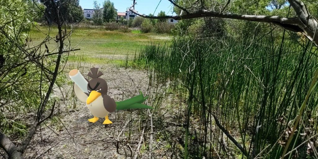 A birdlike Pokemon carrying a leek over its shoulder inserted into a photo of a nature scene with tree branches, reeds and an empty field.