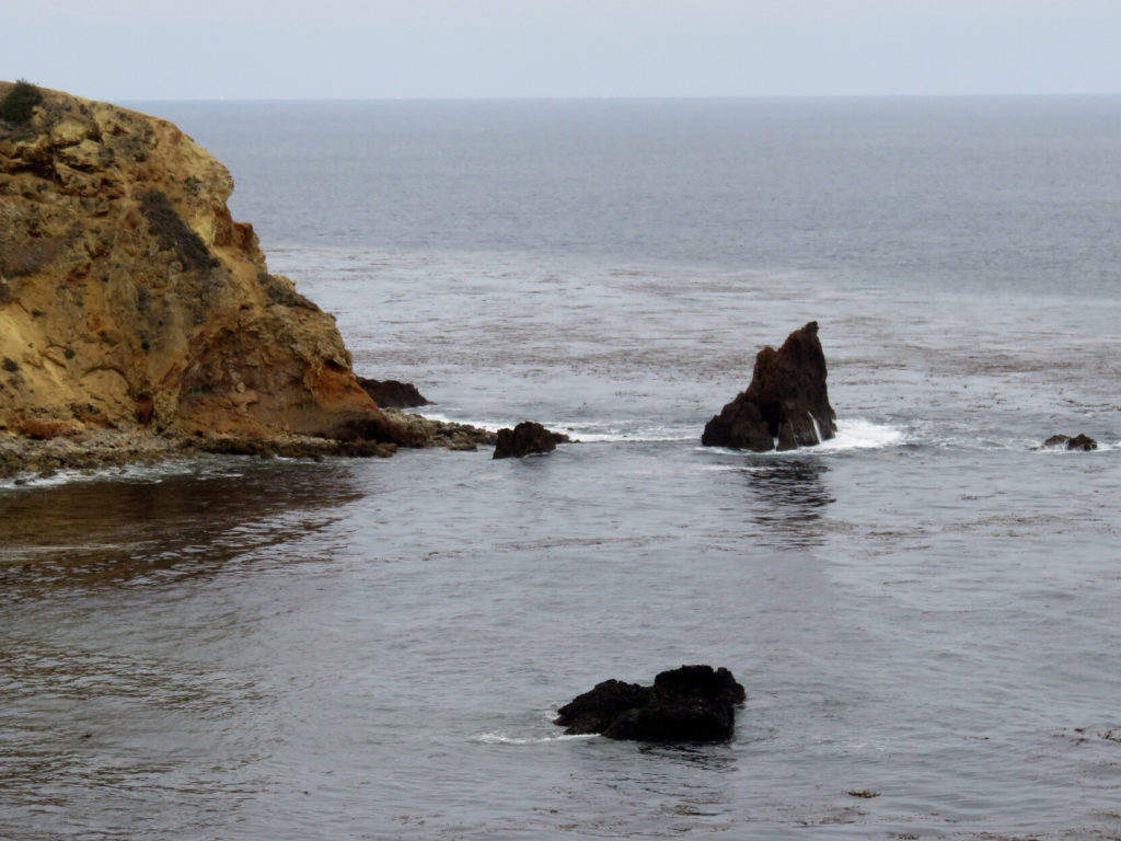 Jagged rocks out in the smooth ocean, not far from a rocky cliff, on a gloomy day.