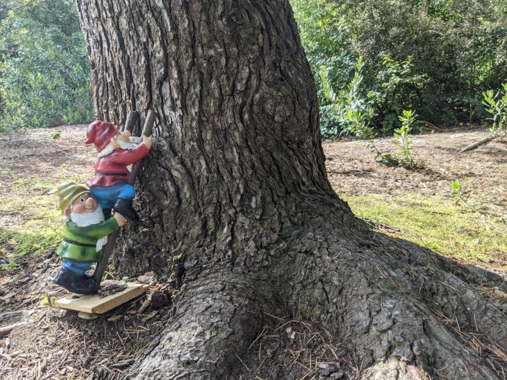 A small statue of two garden gnomes climbing up a ladder. It's been placed against a tree trunk.